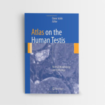28_Atlas on the Human Testis