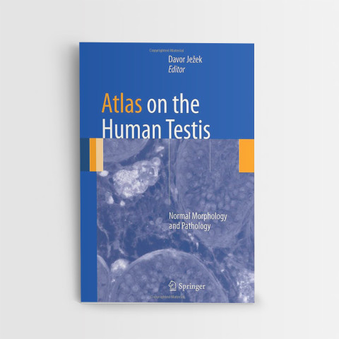 28_Atlas on the Human Testis