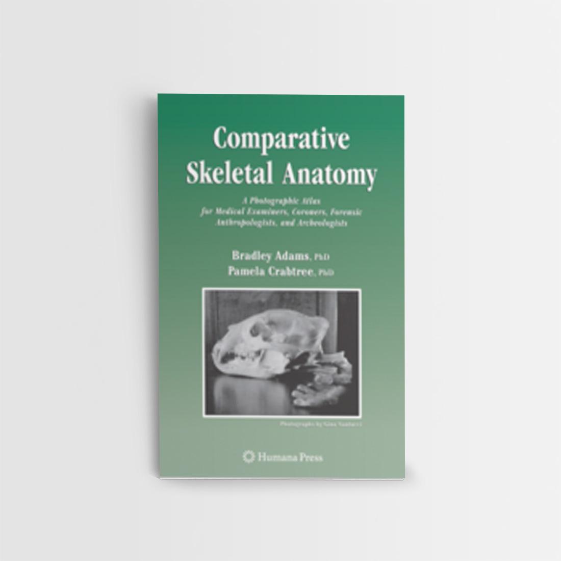 Comparative Skeletal Anatomy - Enea Brivio