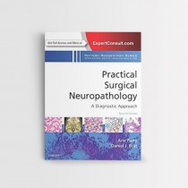 Practical Surgical Neuropathology A Diagnostic Approach