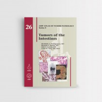 afip_26_Tumors of the Intestines